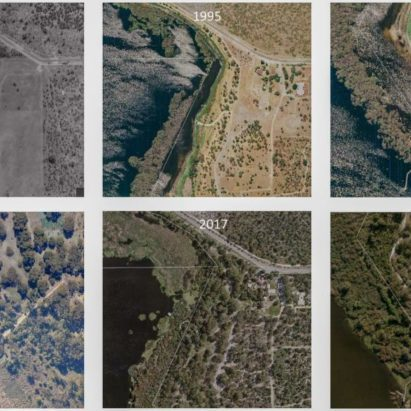 Satelite images of Bibra Lake from 1953 to 2018 showing vegetation cover